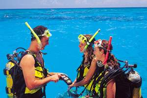 Dive Club in the ocean